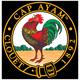 Ayam Brand™新加坡